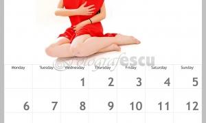 calendar-personalizat-tulcea-12