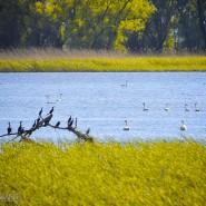 Foto Grup Elevi – Delta Dunarii